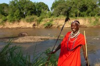 maasai waiter with hippo next to mara river